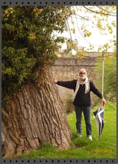Boris Sodoma a strom